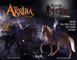 AD_Arriba_MSMobBoss