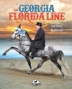 Georgia Florida Line