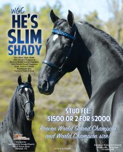 Hes slim shady