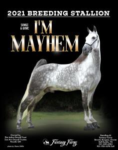Im Mayhem