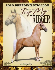 Trip My Trigger