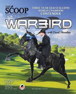 FC-Warbird