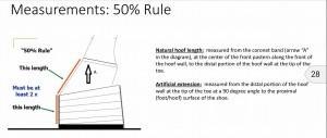 USDA Shoe Regulation Part 2