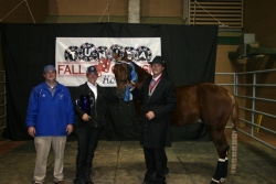 View the album 2013 Tunica Fall Classic