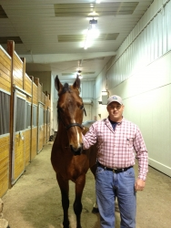 View the album Spencer Benedict Stallion Preview