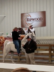 View the album Ripwood Sale