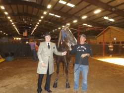 Robert Deutsch and Country Gentelman win the 3 Yr Old Amateur class, shown with Chad Baucom   .jpg