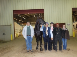 3 Y O Amateur Stallions Winner, Dollars from Down Under with Edwina Duddy, for Dick Peebles.Clemson Show Oct 25, 26 157.jpg